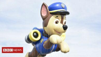 Photo of Paw Patrol: Cartoon not cancelled regardless of White Dwelling feedback