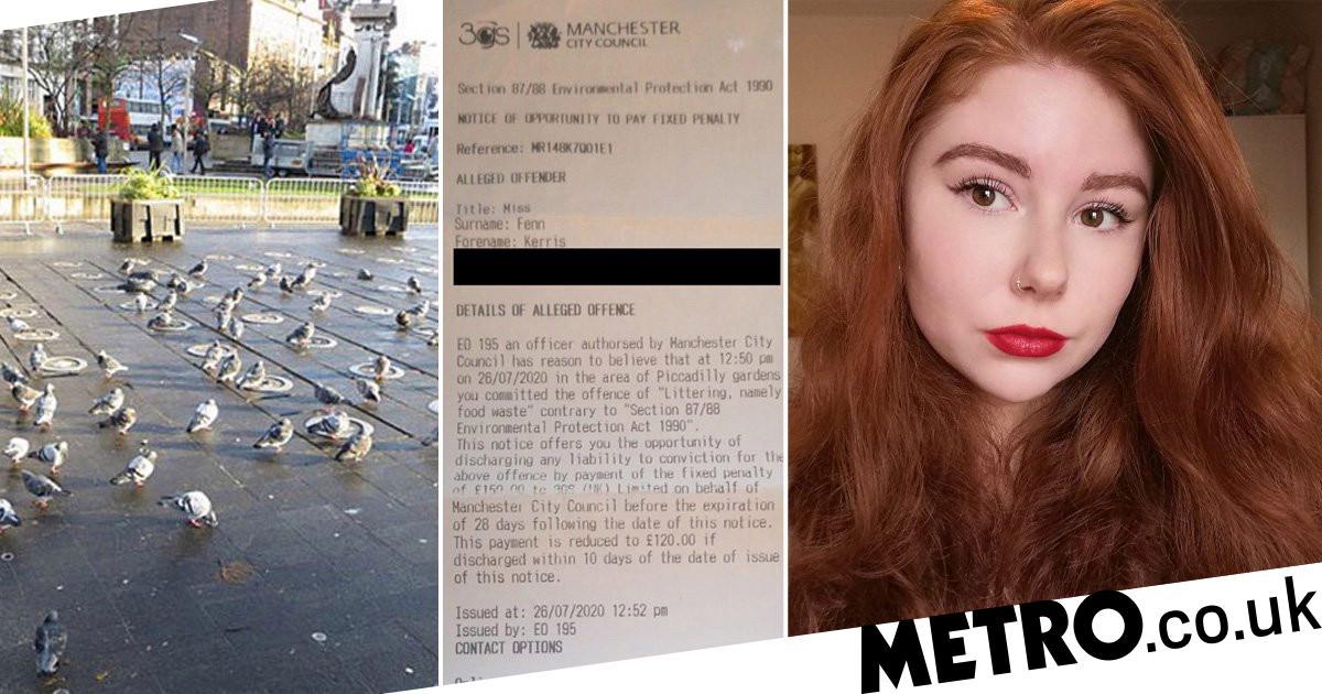 Woman handed £120 fine for feeding pigeons Greggs vegan sausage roll
